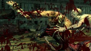 Splatterhouse2010